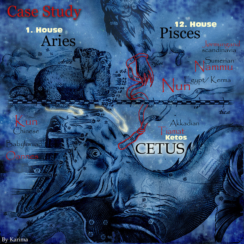 CASE STUDY of Cetus constellation by Karima
